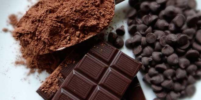 cacao-epicatequina